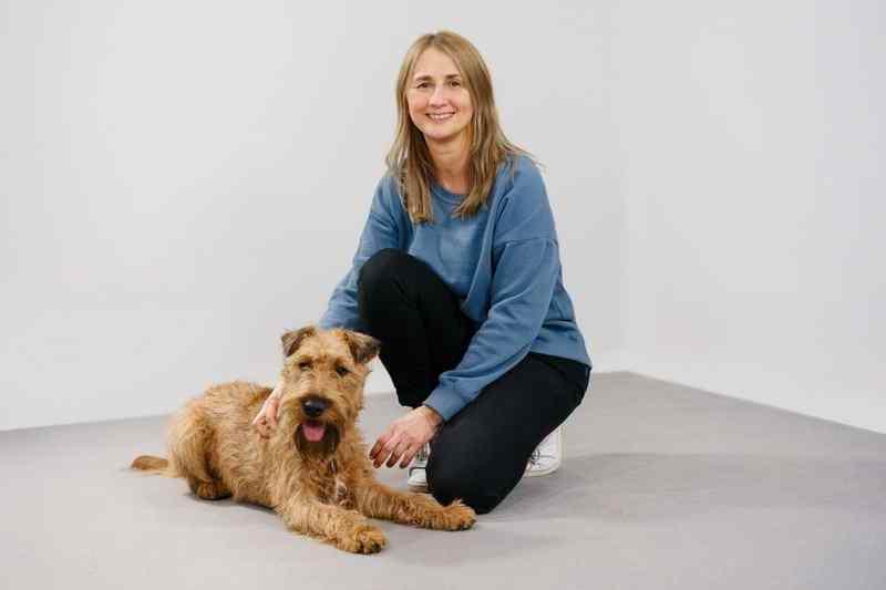 Irish Terrier Radagast Therapiehund