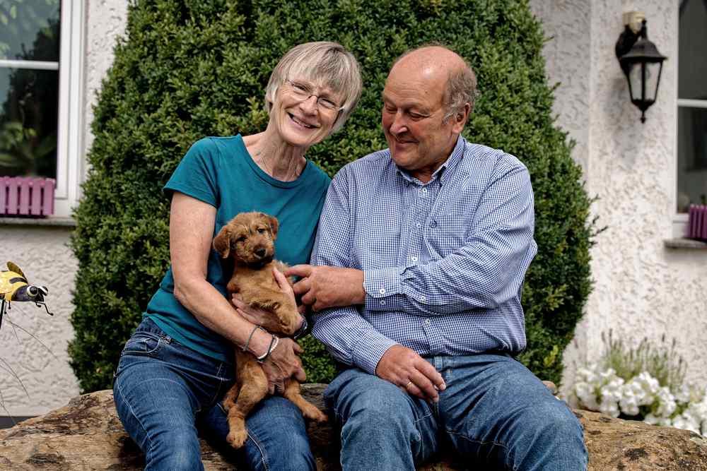Irish Terrier Sam vom Hürtgenwald mit neuer Familie